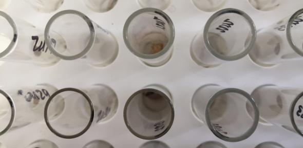 isotopesamples.jpg